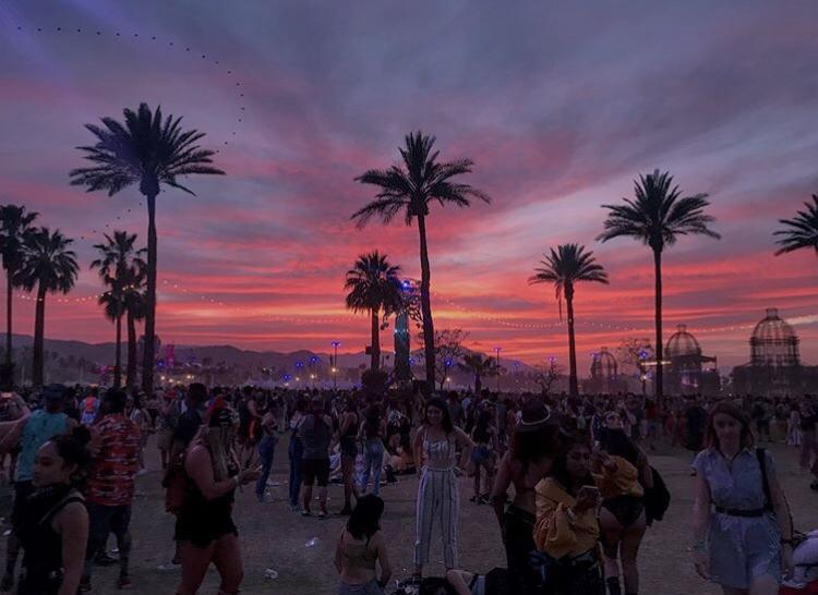 My Coachella Diary🌵☀️🌻🌴